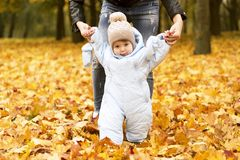 First steps of little kid in autumn park. Mother teaching her cute little son to walk. Stock Photography