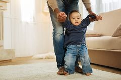 Sweet child learning to walk. First steps. Nice dark-eyed small boy standing near the couch and learning to walk while his afro-american daddy holding his hands Royalty Free Stock Photo