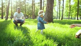 First steps of toddler girl walking from father to mother on grass in sunny park stock footage