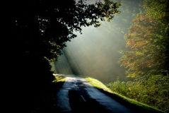 First sun light on a pathway Royalty Free Stock Photography
