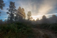 First sun rays over rural road. Way to light Royalty Free Stock Photos