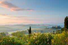 First sunlight in Tuscan hills Royalty Free Stock Photography
