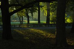First sunrays at autumn morning in Topcider park, Belgrade stock photos