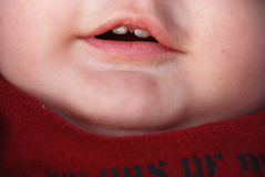First teeth Royalty Free Stock Photo