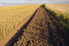 First tillage trench in the crop field Stock Photos