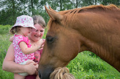 First Time meeting horse Royalty Free Stock Photo