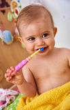First toothbrush Royalty Free Stock Photo