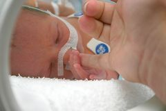 First touch. A mother touches her newborn premature baby for the first time Royalty Free Stock Images