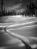 First Tracks - Black and White Stock Photos
