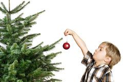 First tree decoration Stock Photography