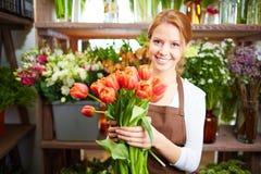 First tulips Stock Photos