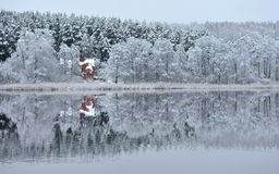 Snowy reflections first winter day Stock Photos