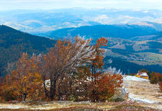 First winter snow and autumn mountain Stock Images