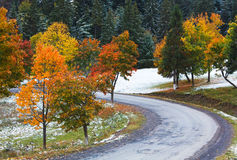 First winter snow and autumn trees near road Royalty Free Stock Photos