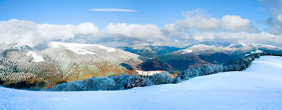 First winter snow and mountain beech forest Stock Images