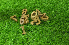 The first, Wooden numbers on green grass Stock Photos