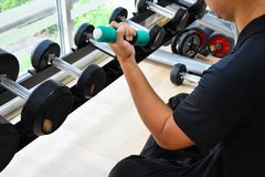 First work out with dumbbells. At gym Royalty Free Stock Image