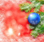 Firtree and Christmas tree decoration Stock Images