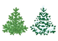 Firtree detailed illustration. Element for your Christmas design Stock Photo