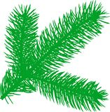 Firtree green element. Vector illustration: Firtree green element Stock Photo