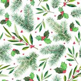 Firtree holly seamless patter, hand-drawn watercolor illustration isolated on white background. Design for textile, wrapping paper, backdrop Royalty Free Stock Image