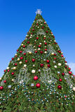 Firtree with Xmas decoration Stock Images