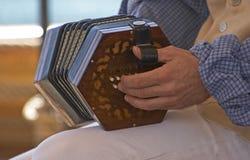 Fisarmonica Fotografia Stock