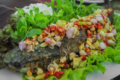 Fisch-Aufschlag mit Kraut und würziger Soße Lizenzfreie Stockfotografie