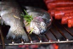 Fisch-Forelle auf Grill in Frankreich in Dordogne stockbilder