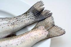 Fisch-Hecks auf einer weißen Platte stockfotografie