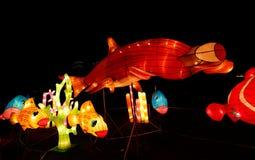 Fisch-Laternen-Show stockfoto