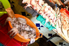 Fisch market. Octopus in fisch market in Tunis stock photography