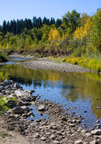Fisch-Nebenfluss-Park Lizenzfreies Stockbild