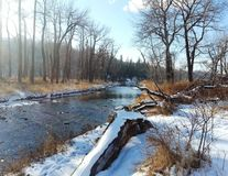 Fisch-Nebenfluss-Park 1 Stockfoto