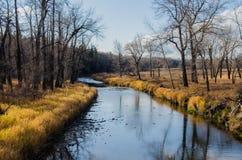 Fisch-Nebenfluss-provinzieller Park Lizenzfreie Stockfotografie