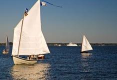 Fisch-Segeln auf dem Chesapeake-Schacht Stockfoto