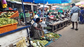 Fisch- und Gemüsemarkt Stockbild