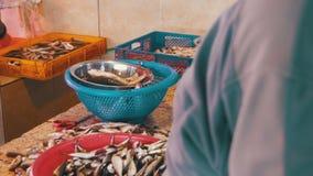 Fisch-Verkäufer-Skalierung und Ausschnitt-Fische im Markt-Stall stock video footage