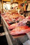 Fischartig Stockfoto