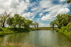 Fischartiger Teich Lizenzfreies Stockfoto