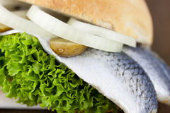 Fischbrötchen. Bread with fish and onions Stock Image