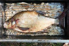 Fischbrachsen auf Gitter im Räucherhaus lizenzfreies stockfoto