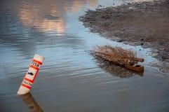 Fische Attractor-Beitrag und toter Baum, die in See schwimmen Lizenzfreies Stockbild