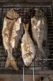 Fische auf bbq Lizenzfreie Stockbilder