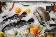 Fische auf dem Eis mit Pfeffern und Zitrusfrucht Lizenzfreies Stockfoto
