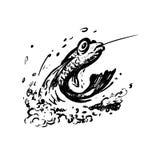 Fische auf dem Fishhook springen vom Wasser heraus. Stockfotos