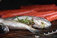 Fische auf dem Grill lizenzfreies stockfoto