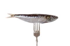 Fische auf Gabel stockfoto