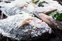 Fische bedecken durch das gegrillte Salz Lizenzfreies Stockbild