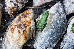Fische bedecken durch das gegrillte Salz Stockbilder